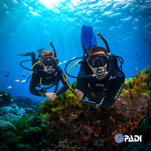 Cours Open Water Diver